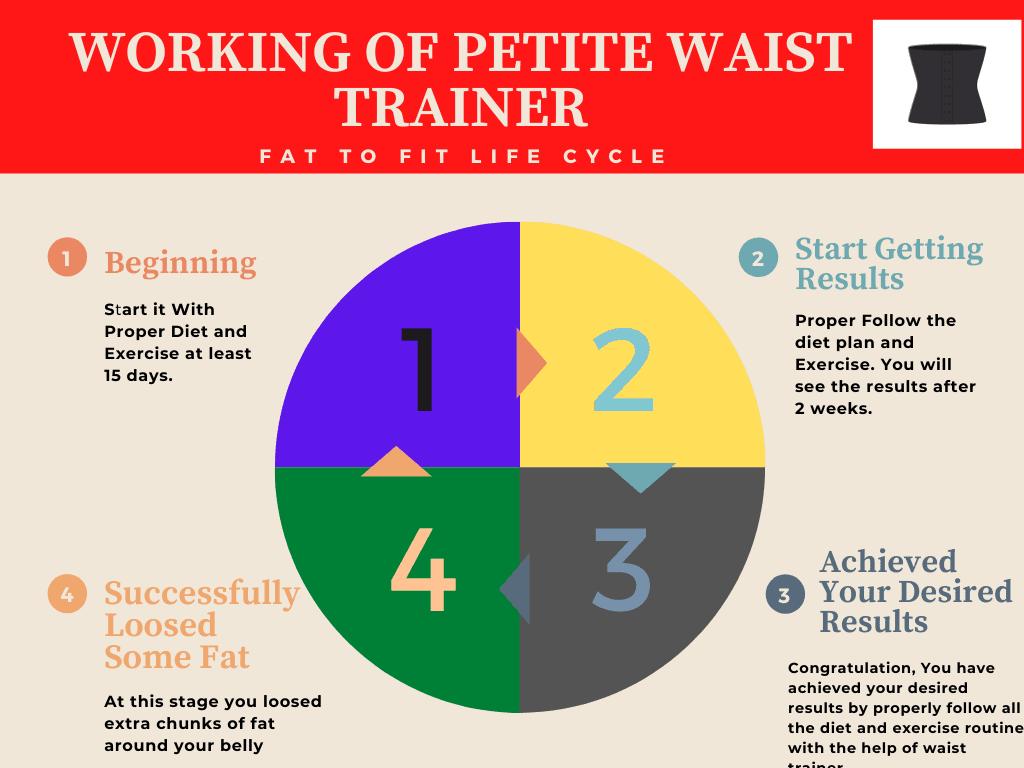 Working of Petite Waist Trainer Graph