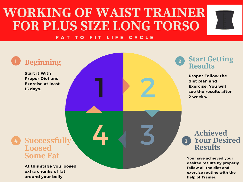 Working of Plus Size Long Torso Waist Trainer Graph