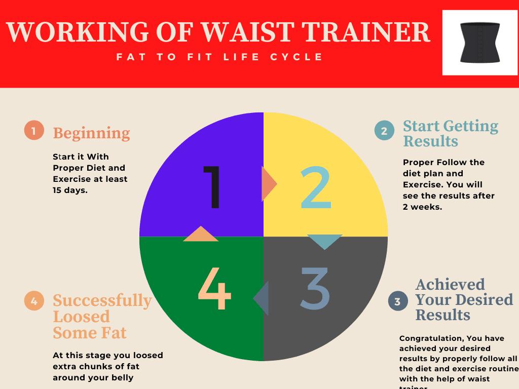 Working of Waist trainer graph